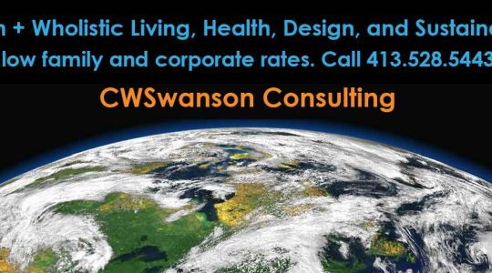 Eco Consulting